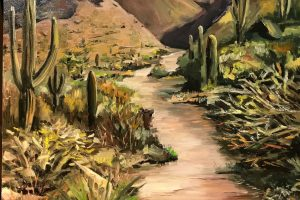 Sonoran Desert Trail